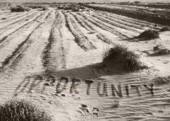 Opportunity Dust Bowl